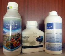 Regent insecticide for garden and vegetable garden